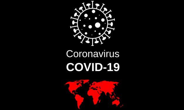 Paradores de Turismo traslada por videoconferencia a las organizaciones sindicales las medidas tomadas contra el COVID-19